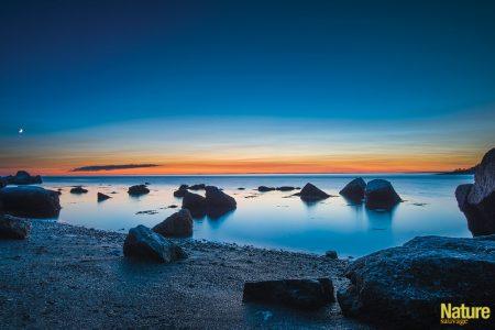 Troisième prix catégorie parcs nationaux et réserves fauniques du Québec - Carl Witty